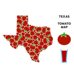 Texas map composition of tomato vector