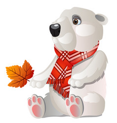 toy white bear with red plaid scarf holding a vector image