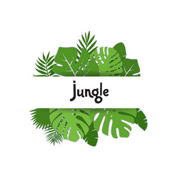 trendy summer tropical palm leaves plants paper vector image