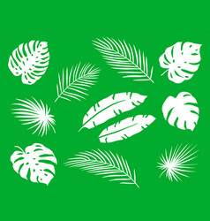 Tropical set palm leaf branch silhouettes vector