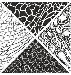 wild animals pattern background vector image