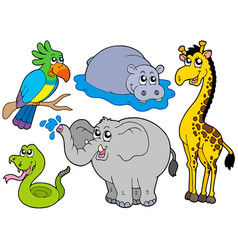 wildlife animals collection vector image