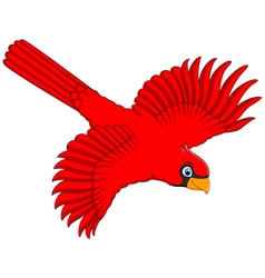 Flying cardinal cartoon vector