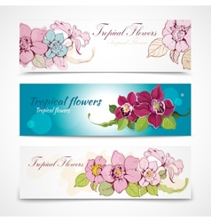 Tropical flower banners vector