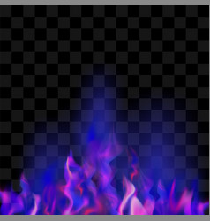 Blue burning fire flame vector