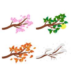 Branch in four seasons - spring summer autumn vector