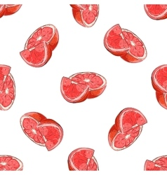 Colorful Grapefruit pattern vector image