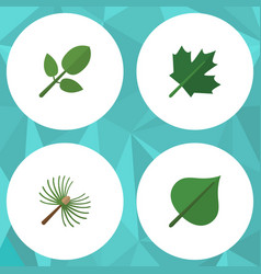 Flat icon nature set of oaken rosemary foliage vector