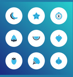 food icons colored set with bunch starfruit vector image