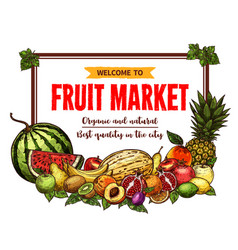 fruit market banner with frame of farm product vector image