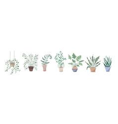 potting trees flowerpots hanging plants in pots vector image