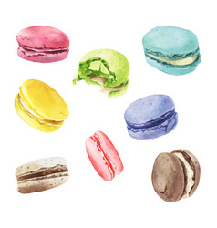 Watercolor macaroons mix vector