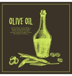 Olive branch with bottle hand drawn sketch vector image vector image