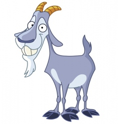 billy goat vector image