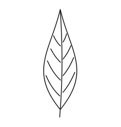 birch leaf icon outline style vector image