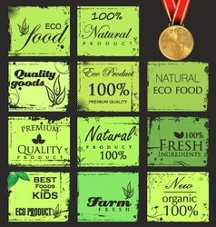 Collection of eco and bio labels retro design vector image