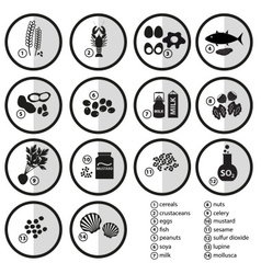 grayscale set of typical food alergens for vector image