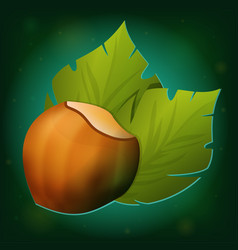 hazelnut with green leaves icon vector image