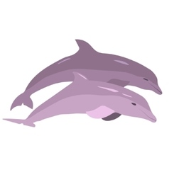 image of dolphins jumping out of the water vector image