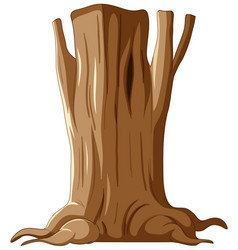 isolated tree trunk and roots vector image