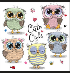 set of cartoon owls on a white background vector image
