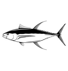 yellowfin tuna fish vector image