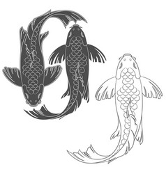 set of with a mirror koi carp vector image