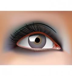 eye closeup vector image vector image