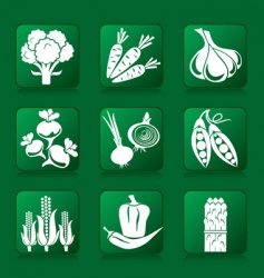 vegetable buttons vector image vector image