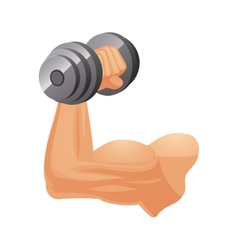 Brawny arm with dumbbell vector image