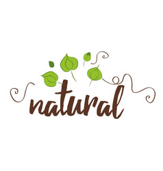 handwritten lettering label natural for vector image