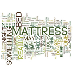 Mattress bliss or mattress nightmare text vector