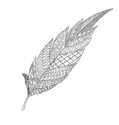Monochrome hand drawn zentagle feather for vector