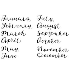 Months of year handmade names of handwritten font vector