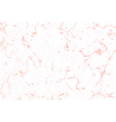 Pattern white marble texture with rose vector