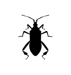silhouette of western conifer seed bug vector image