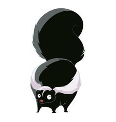 cartoon fat skunk vector image