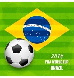 Soccer ball with Brazilian Flag vector image