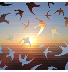 swallow silhouette on triangle sky and sun vector image