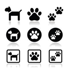 Dog paw prints icons set vector image vector image