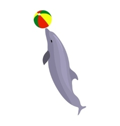 jumping dolphin playing with vector image