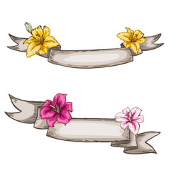 two decorative kraft ribbons and lily flowers vector image vector image
