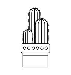 cactus succulent flat linear icon vector image