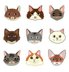 Cats breeds hand drawn set vector