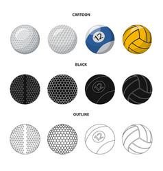 design sport and ball symbol collection vector image
