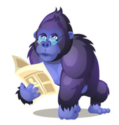 funny animated gorilla reading a book isolated on vector image