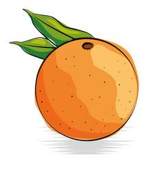 Orange fresh and healthy fruit vector