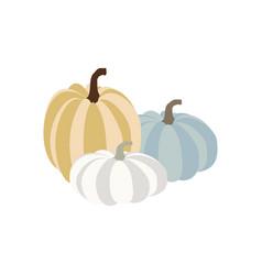 Pumpkin autumn vector