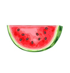 Ripe watermelon slice vector