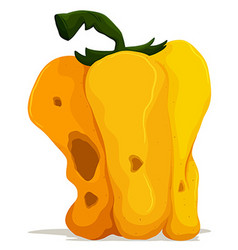 Rotten yellow bellpepper on white background vector